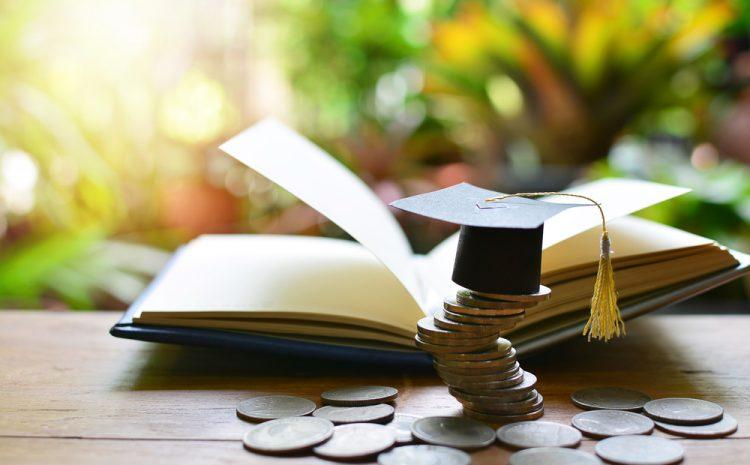 Jurusan Yang Paling Diminati Calon Mahasiswa Tahun Ini